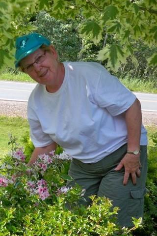 Sylvia Doris Pickles Obituary And Death Notice On Inmemoriam